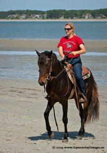 Marsh Tacky Horse
