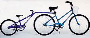 Tandem Hilton Head Bike